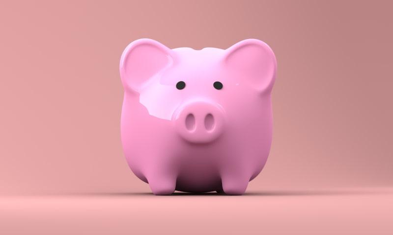 Pink Piggy Bank