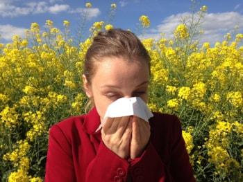 allergy-350